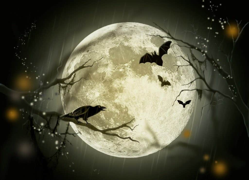 7 recetas para Halloween murciélagos y luna llena